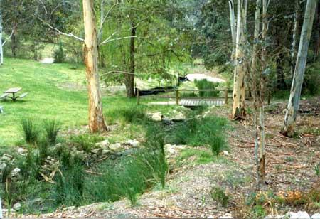 Creek line with new planting, mulching, creek rocks